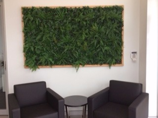Framed Green Wall in Office