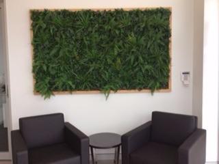 Framed Green Wall in Office