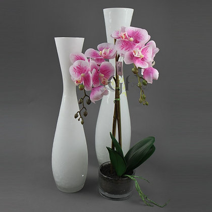 50cm Phalaenopsis Orchid GF20079 - Mauve