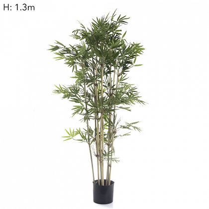 Japanese Bamboo Tree x 9 stems  1440 Leaves  1.3mts