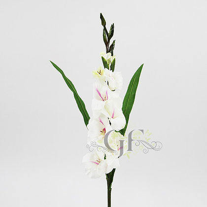 85cm Gladiolus  GF60422 - White