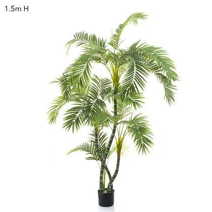1.5mt Parlour Palm Twisted Trunk AP208