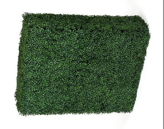 Boxwood Hedge (Dark) 75Hx100Wx25D