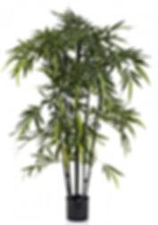 New Bamboo Tree Black Stem 1.5mt Artific