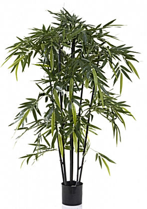 New Bamboo Tree Black Stem 1.5mt Artific