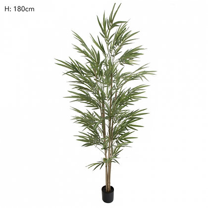 Bamboo Tree Natural Trunk  974 Leaves  1.8mts