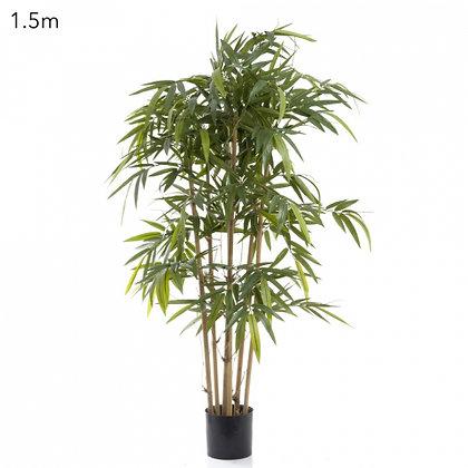 New Bamboo 1.5mts
