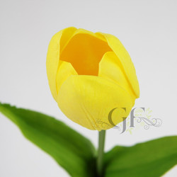 Tulips & Gerberas
