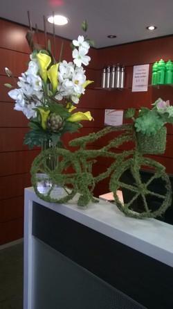 Moss Bike
