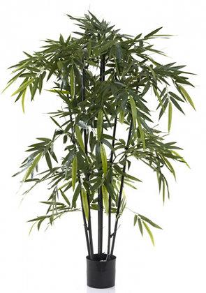 New Bamboo Black Stem 1.5mts