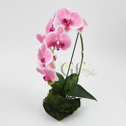 50cm Ruptured Orchid GF60317 - Purple