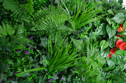 Artificial Garden Wall - Lavandula