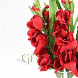 Hydrangeas & Gladiolus