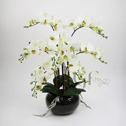 65cm Phalaenopsis Orchid GF20076 - Apple Green