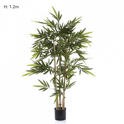 Bamboo Tree with 704 Leaves  1.2mts
