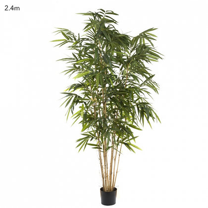 Giant Bamboo Tree Natural Trunk  2.4mts