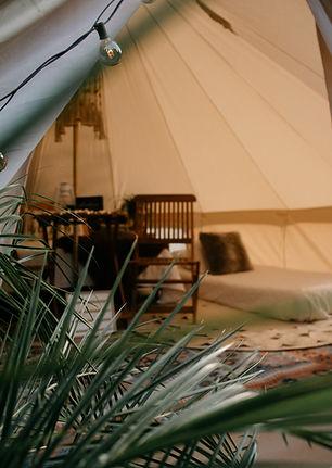 tent_close-up.jpeg