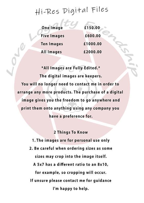 Hi Res Digital File Logo.jpg