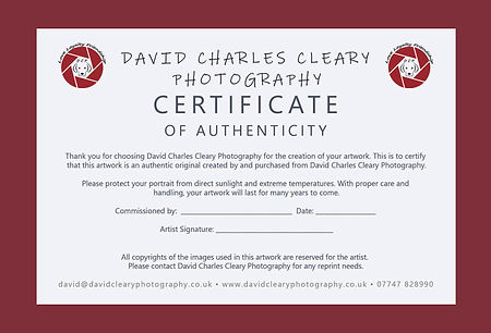 Certificate of Authenity.jpg