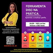 FERRAMENTA DISC NA PRATICA.png