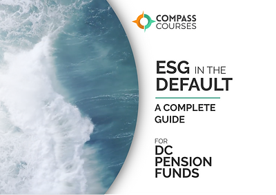ESG IN THE DEFAULT A COMPLETE GUIDE.png