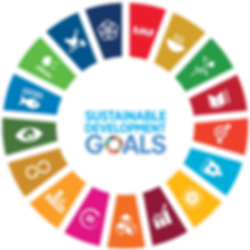sdgs-wheel-icons.png