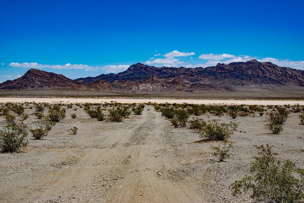 near death valley background.jpg