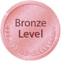 Bronze Level KraftiMedia Marketing LLC_e