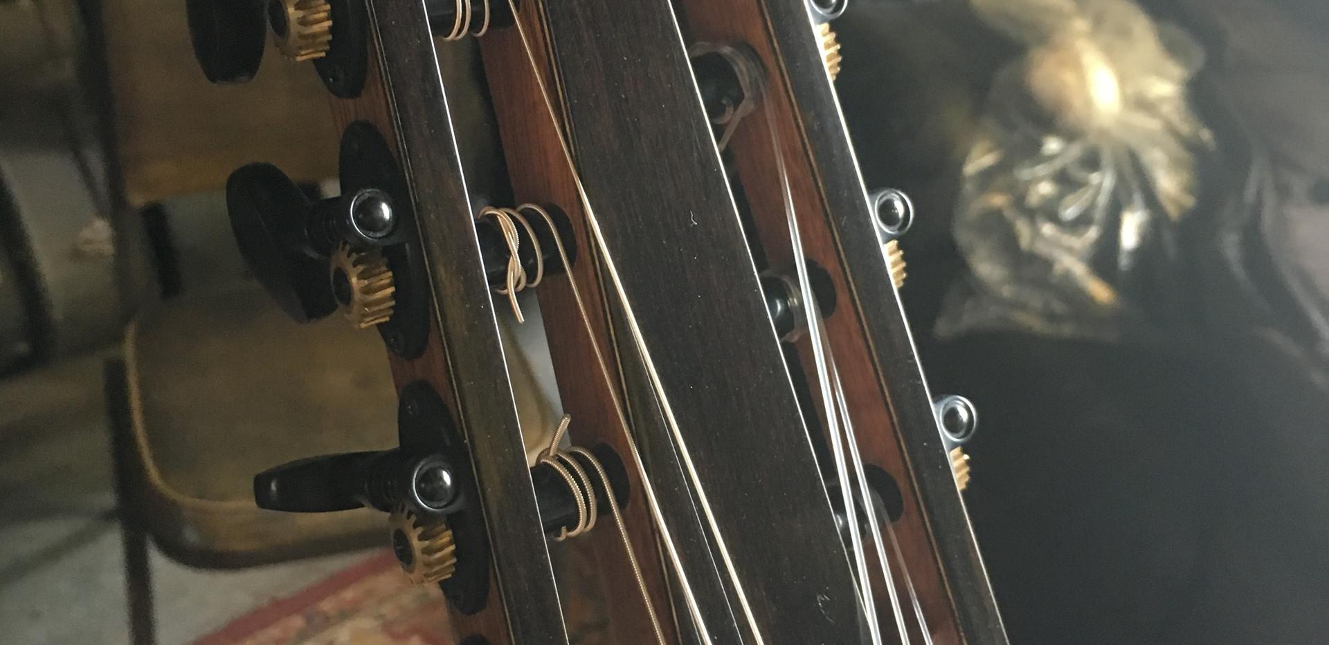 New 2019 GVR Classical 7 String Precious Woods