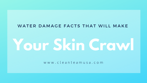 Water Damage Facts that will Make Your Skin Crawl