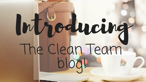 The first ever, Clean Team Blog!
