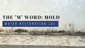 "Water Restoration 101: The ""M"" Word: Mold"