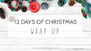 12 Days of Christmas Wrap Up