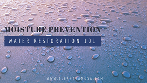 Restoration 101: Moisture Prevention