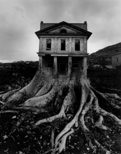 house-421x535.jpg