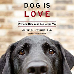 audiobook by James Langton Dog Is Love. book cover graphic