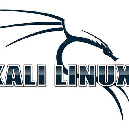 Why Kali Linux?