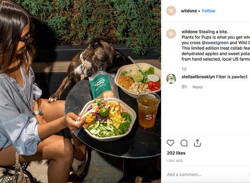"""Pais de Pet. Novos PDVs estão surgindo para satisfazer a vontade dos millennials de """"cuidar""""."""