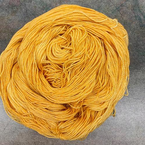 Timaru-Squash Blossom