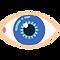 eye (1).png