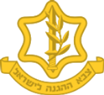 IDF Logo_edited.png
