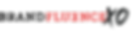brandfluence logo.png