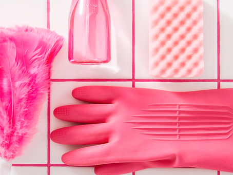 Spring Cleaning Quarantine Guide