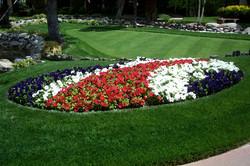 Flower beds char 4.16.02 038.jpg