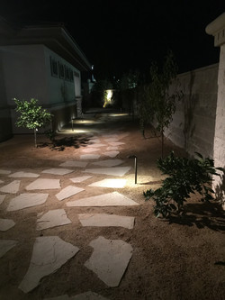 Flagstone Path Through an Orchard