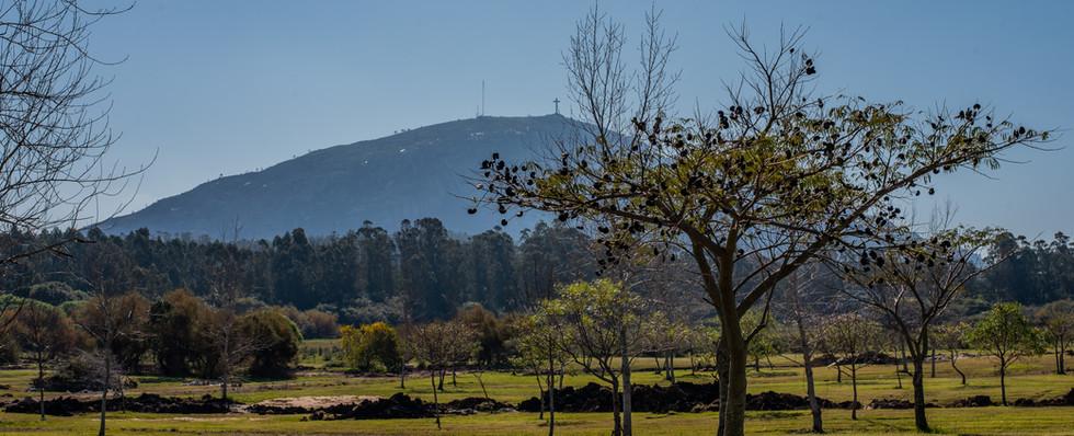 Panorámica vista al cerro