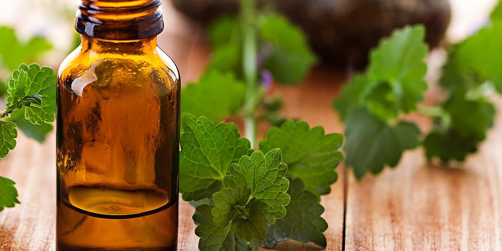 Mayernik Kitchen Herbal Tincture Workshop