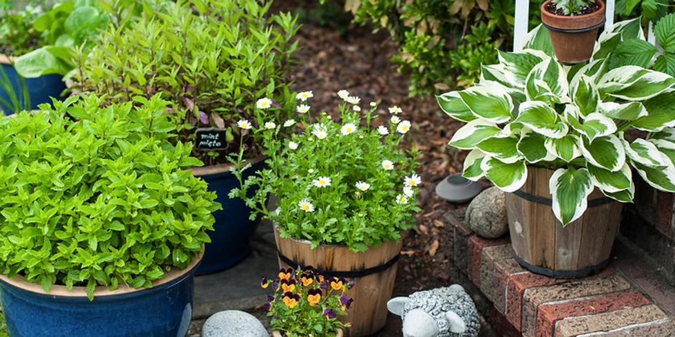 Greenest Place in Passaic County, Garden Contest