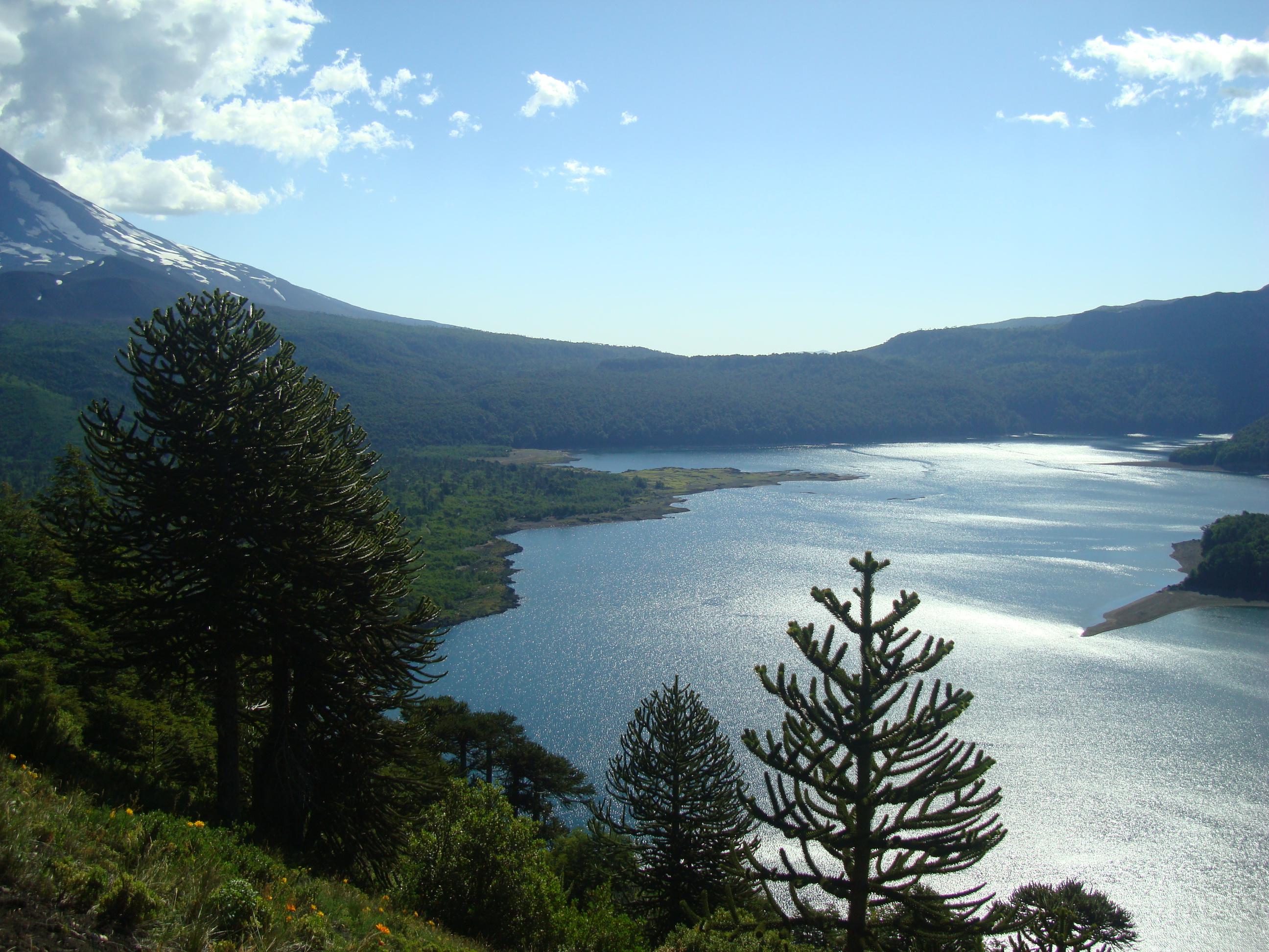 Lago Conguillío