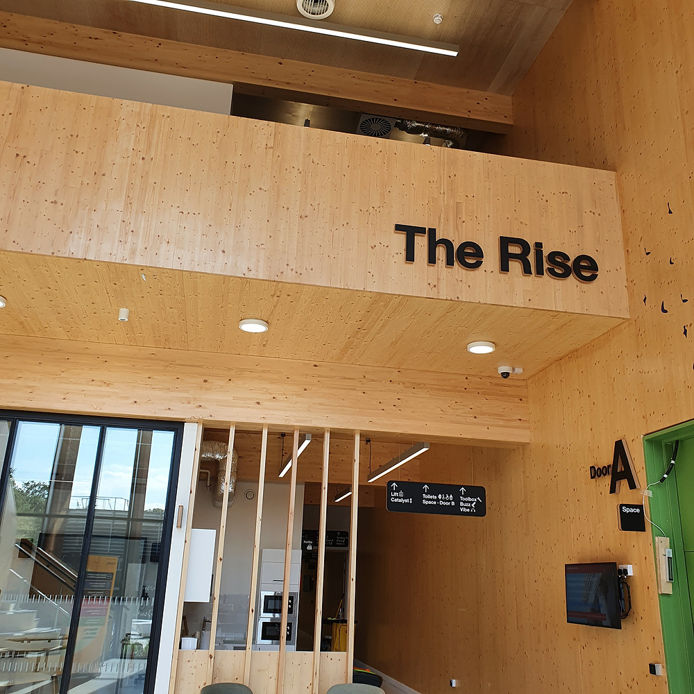 This image shows the PEARL entrance lobby space, called The Rise,